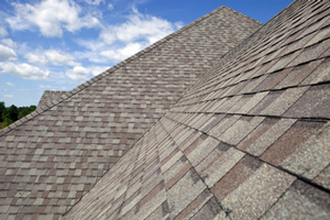 Homes roofed with asphalt shingles in Randlett