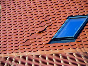 Damaged Skylight & Roof Leak Repair in North Texas
